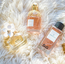 Fragrances & Perfumes